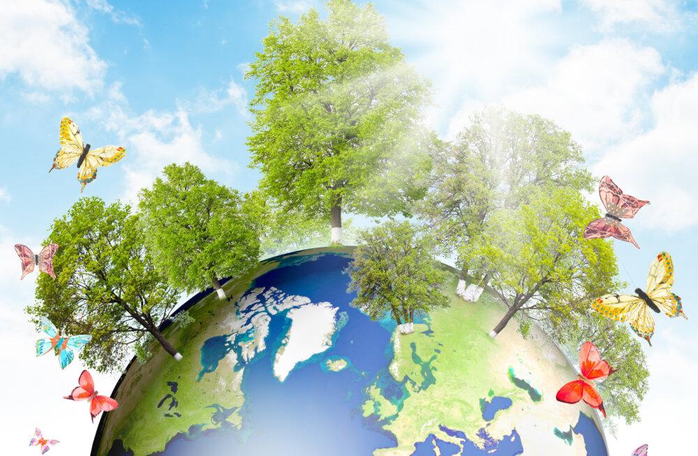Teadlased tõdevad: elurikkuse kadu seab ohtu ökosüsteemide kestlikkuse