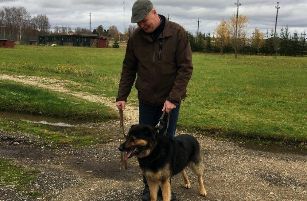 USKUMATU LUGU | Kolm kuud Viljandi varjupaigas kükitamist ja koer läks lõpuks oma koju tagasi