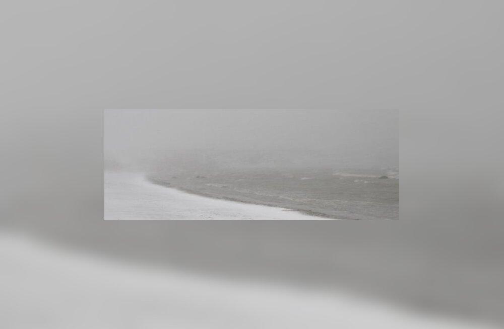 Sõrves sadas ööpäevaga maha meetri jagu lund