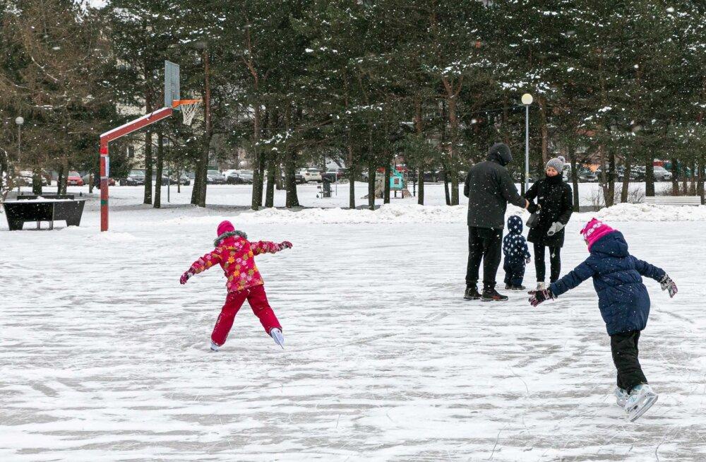 В Пыхья-Таллинне открыт общественный зимний каток