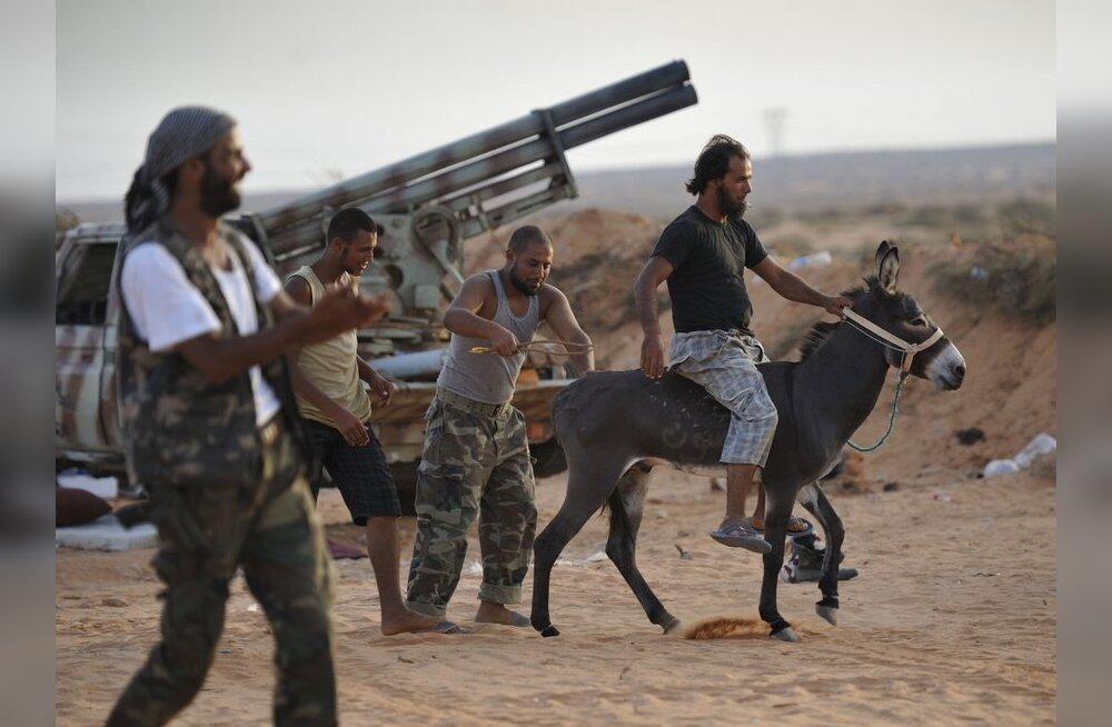 Liibüa mässuliste sõnul võetakse seaduste aluseks islam