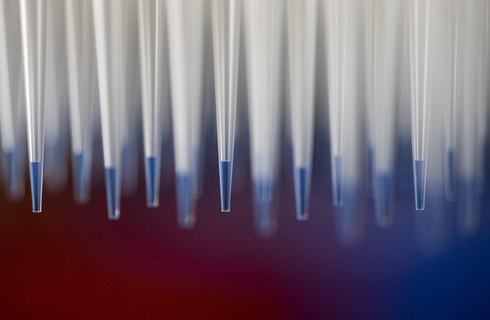 Teadlased hoiatavad: laboris taasloodud rõugete tõttu on maailm jälle haavatavam
