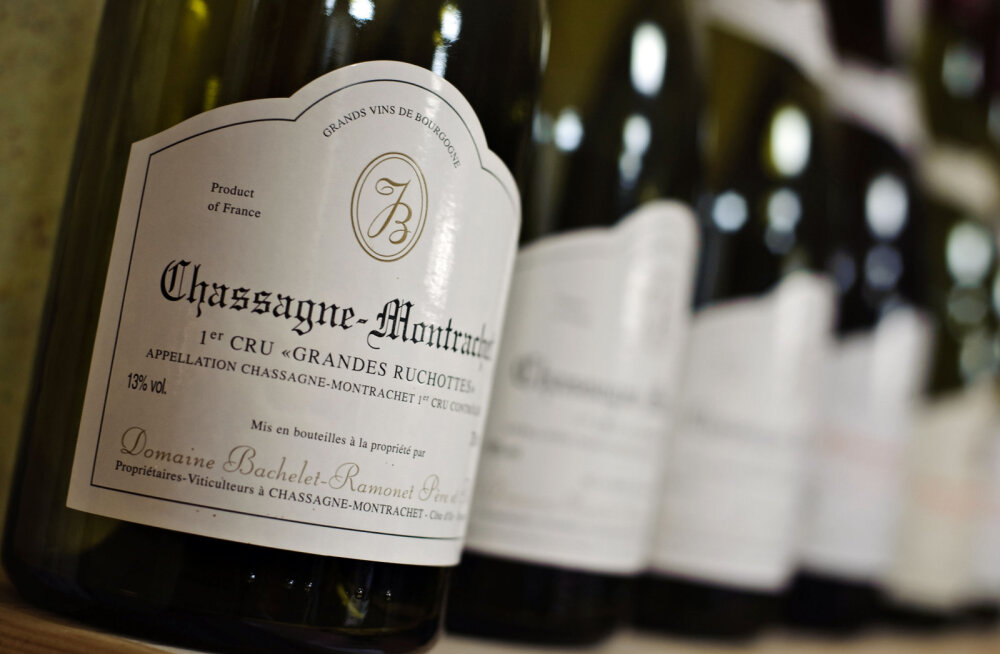 Alternatiivne investeering. Mida pidada silmas veini investeerides?