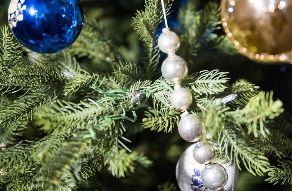 Niguliste jõulupuu