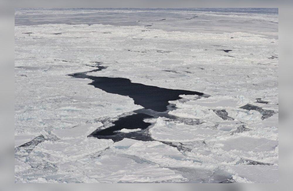 ÜRO: Põhja-Jäämere jää sulab rekordkiirusega
