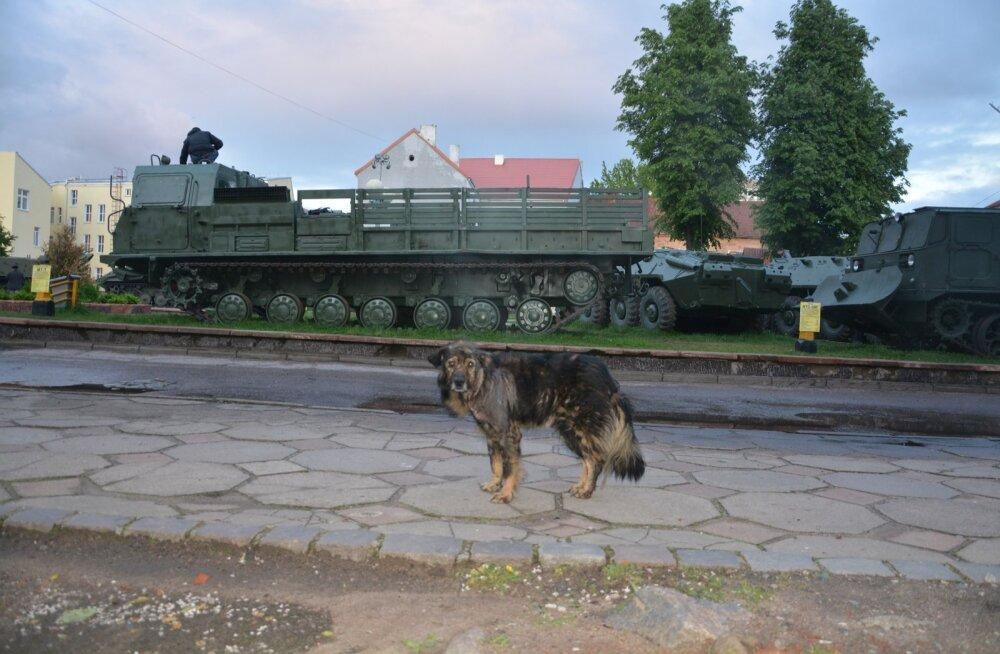 Sovetskis üle piiri tulijat tervitab vanast sõjatehnikast moodustatud II maailmasõja memoriaal, mida lapsed ja hulkuvad koerad kasutavad mänguväljakuna.