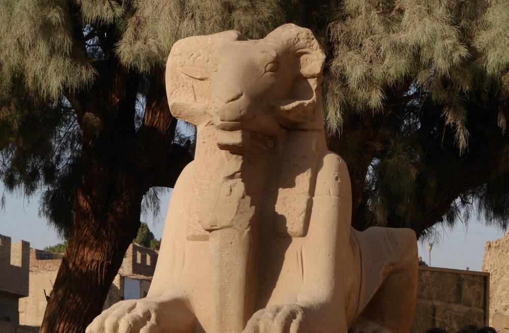 В Египте нашли сфинкса с головой барана