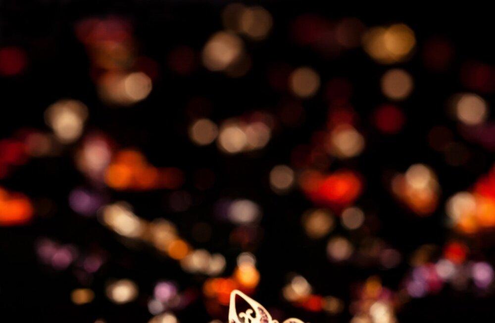 f4f6448963a Täna on rahvusvaheline teatripäev - vaata kes on Eesti teatri  aastaauhindade nominendid