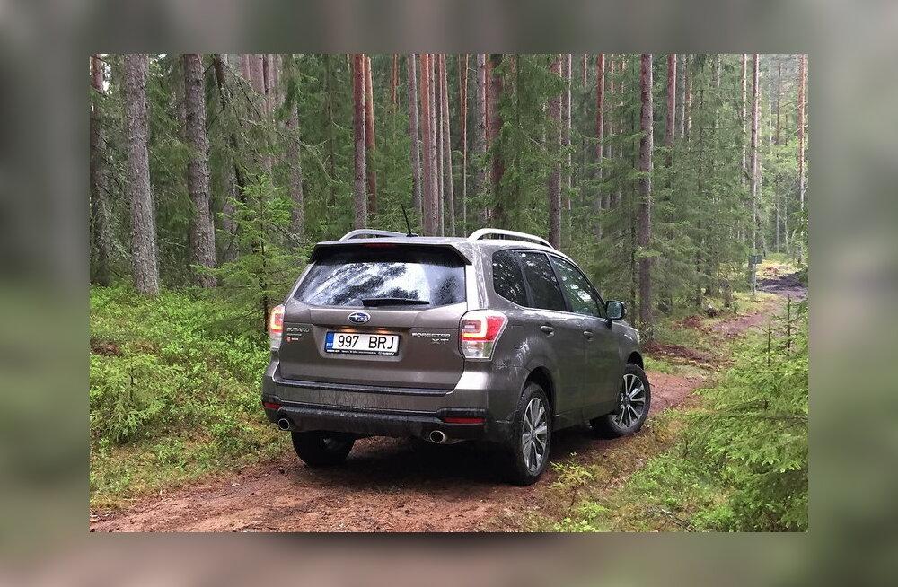WhatCari proovisõit: uuenenud Subaru Forester – seest nägusam, väljast endine