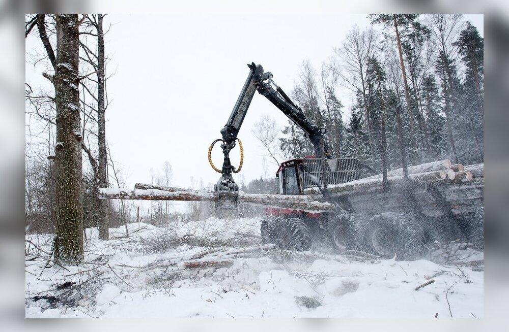 Salapärane miljonär ostab kokku Eesti metsa