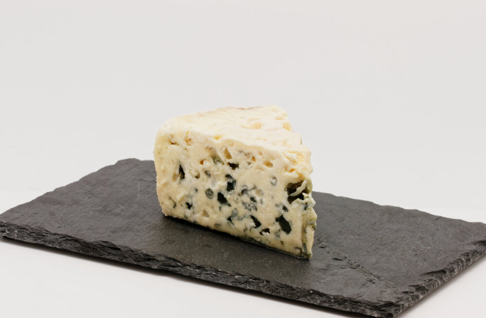 Rootsi rannavetest leiti erakordselt pikantse lõhnaga kamakas barokset juustu