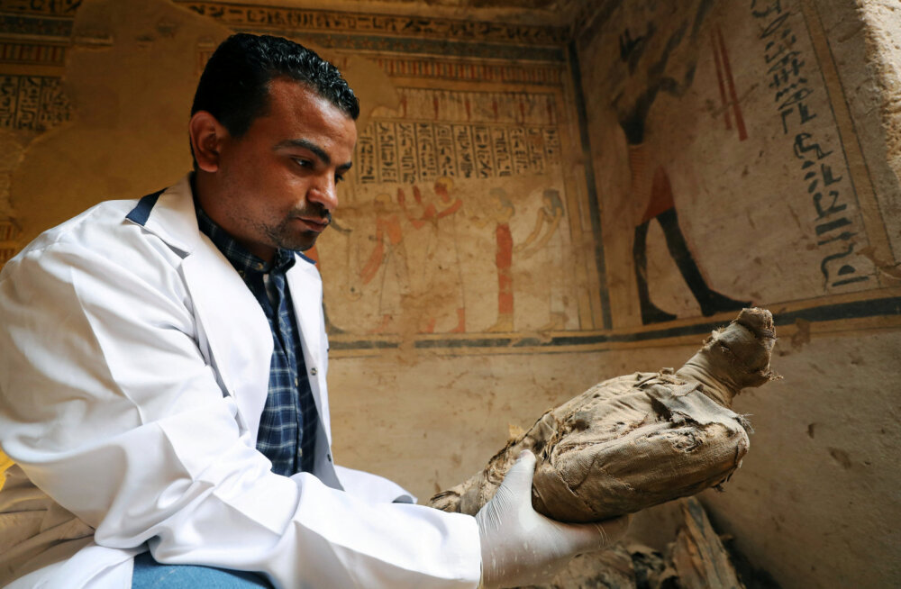 ФОТО: В Египте нашли гробницу с 50 мумиями животных