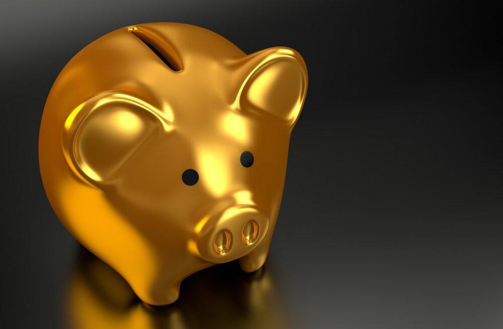 Sotsiaalne investeerimine - kas algajad peaksid seda tegema või mitte?