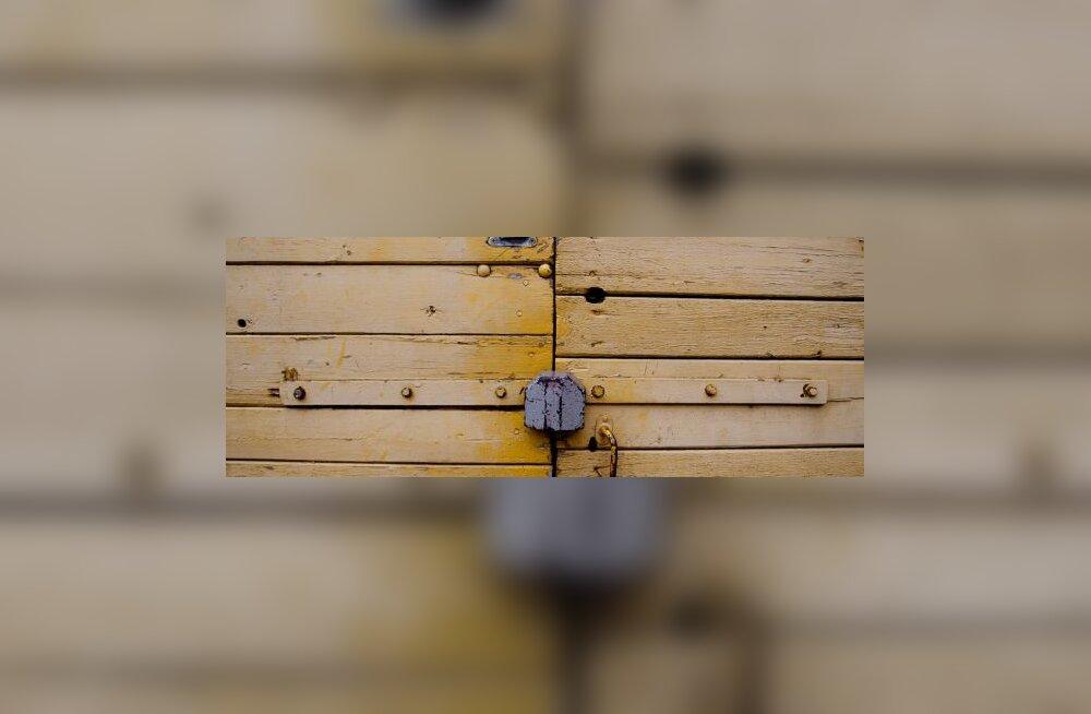 Linnapea Viitkin avas Eenmaa suletud ukse