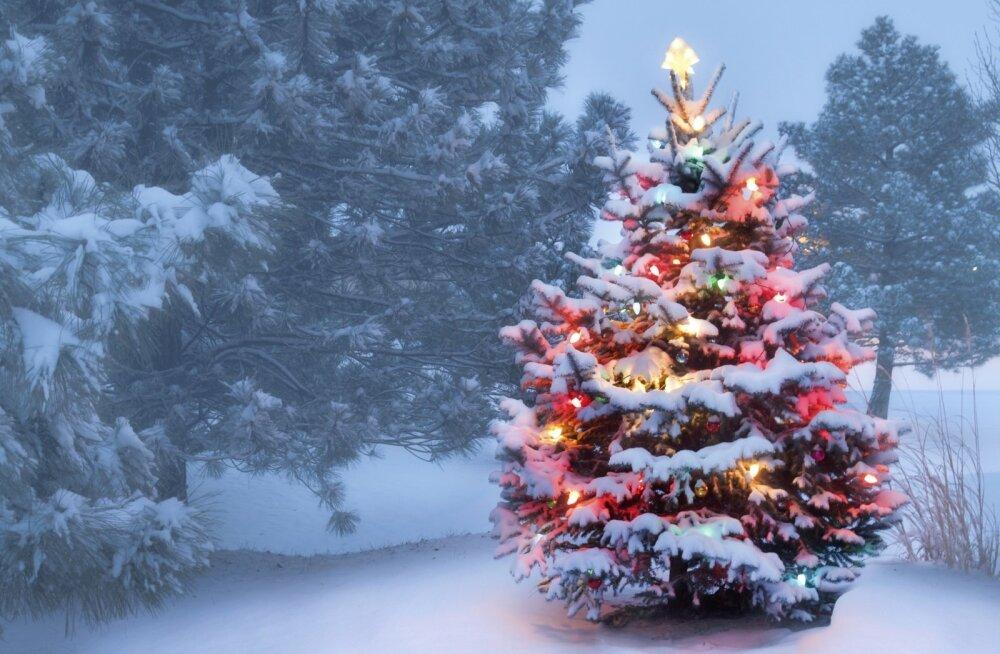 Лучшие рождественские фильмы всех времен