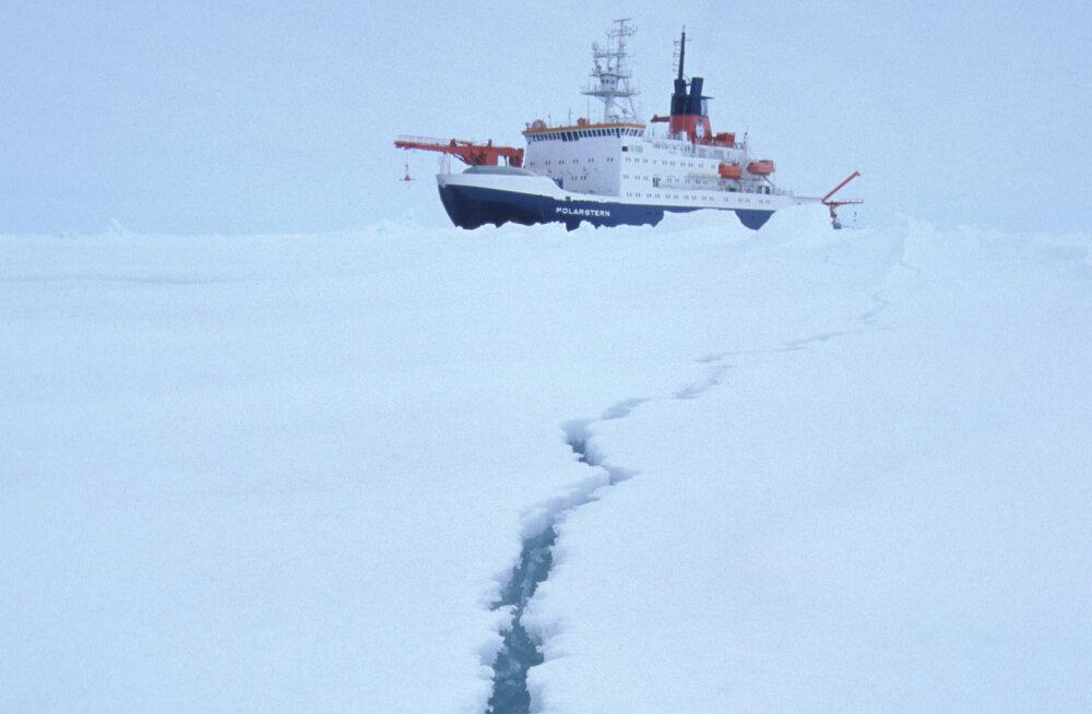 Ученые из 19 стран отправились в крупнейшую в истории экспедицию в Арктику