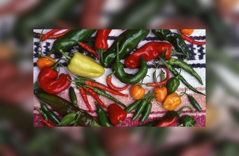 Kuidas toiduallergiat kontrolli all hoida