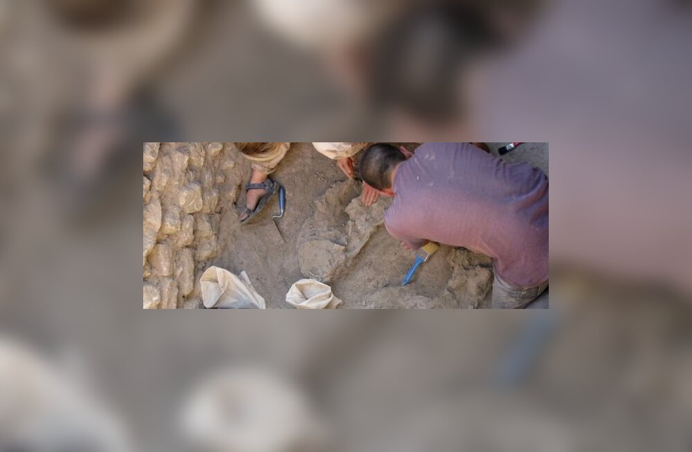 Arheoloogid leidsid Trooja sõja aegse mehe ja naise