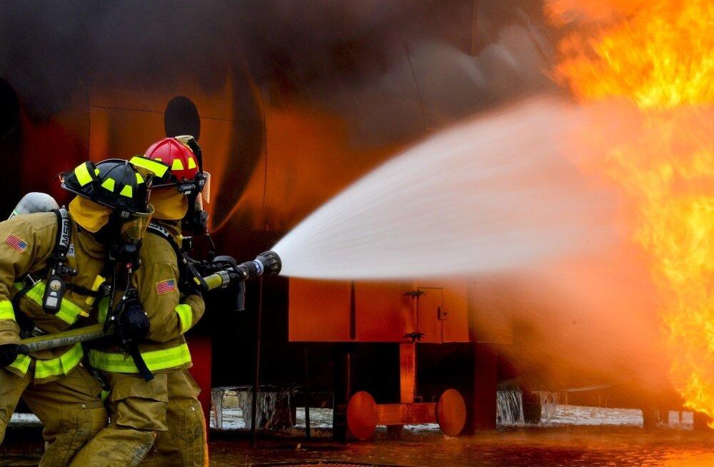 ФОТО | Горячие австралийские пожарные вновь разделись для благотворительности