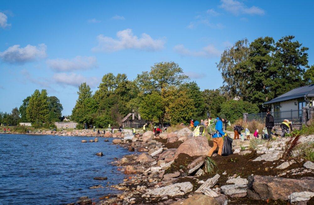 Всемирный день чистоты в Эстонии: 30 000 участников собрали 1,6 млн окурков