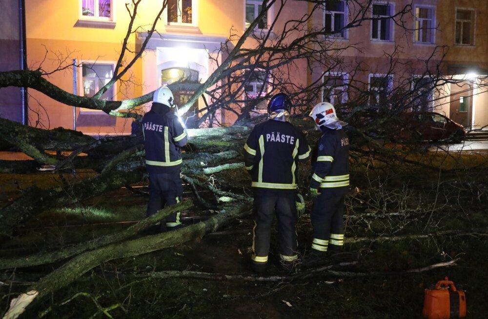 Päästeamet on tormi tõttu saanud üle 400 väljakutse