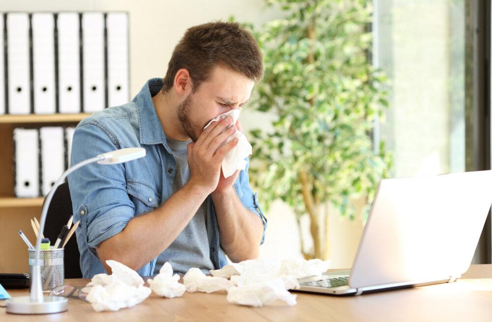Lugeja küsib: miks käivad inimesed haigena tööl? See on ju täiesti vastutustundetu