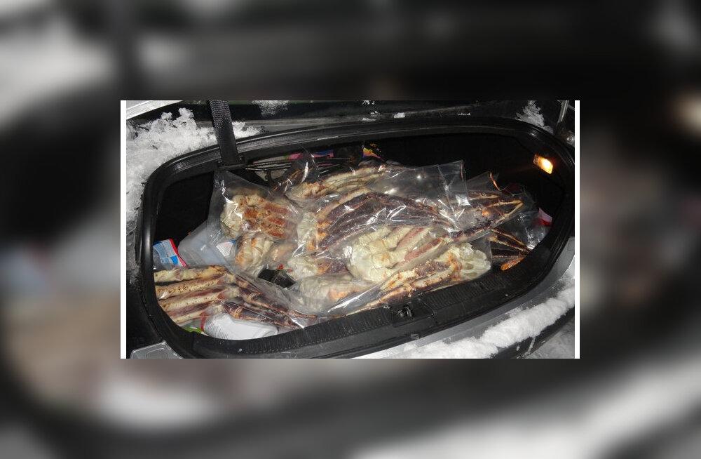 Переборщил с гостинцами? В Ивангороде задержан эстонец с полным багажником деликатесов