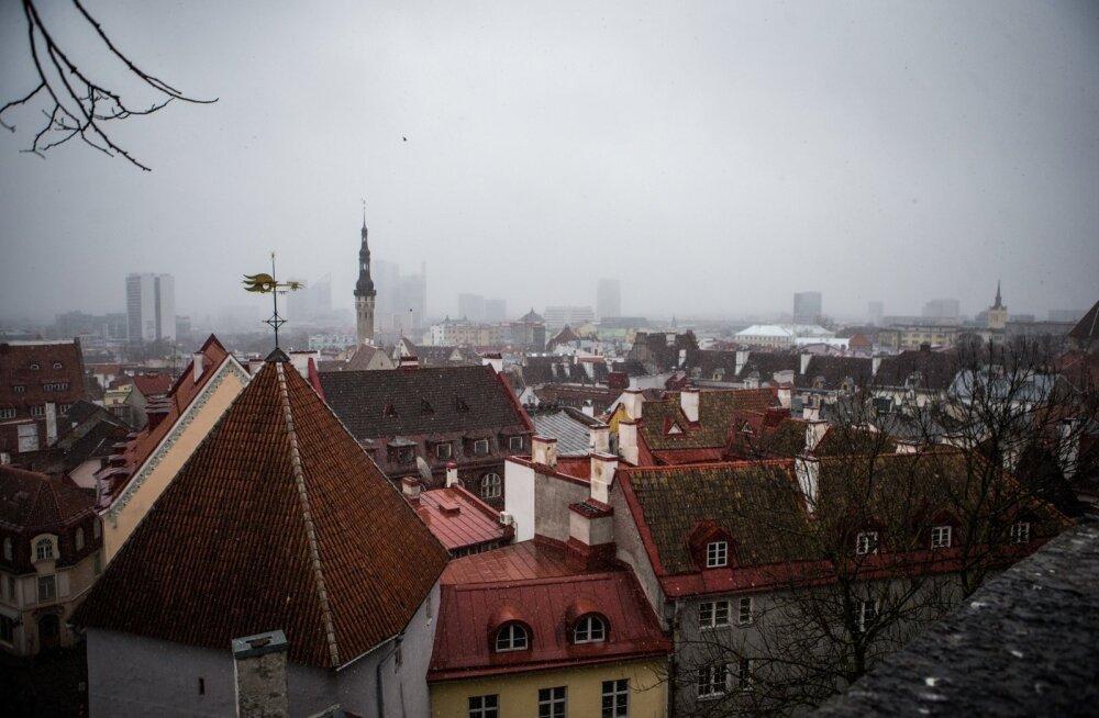 Lörtsisadu Tallinnas
