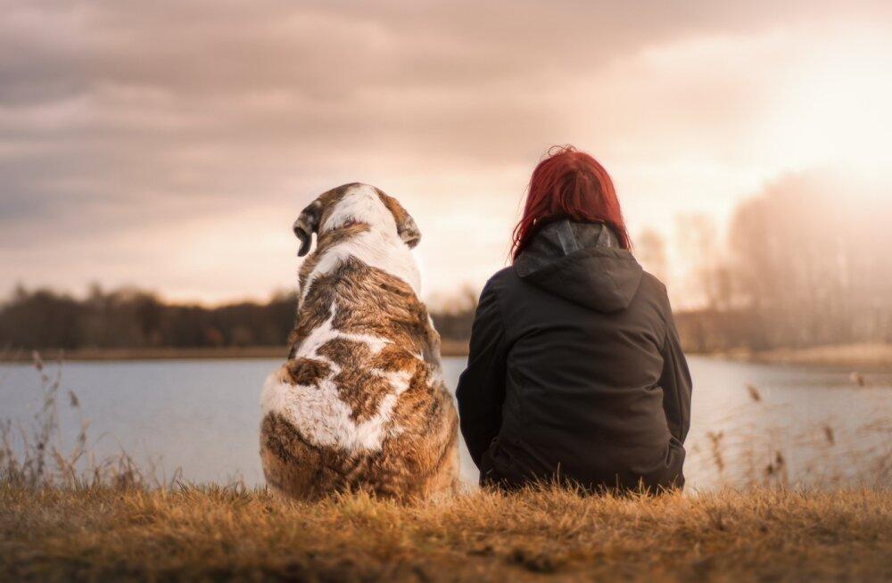 Mida koer sinust arvab? 5 moodust, kuidas koerale oma armastust välja näidata nii, et ka tema seda mõistaks