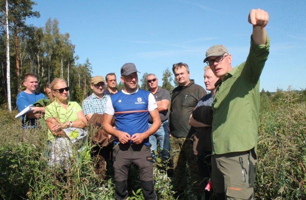Õppepäevalised (paremal Metsatervenduse OÜ metsaülem Anti Rallmann) jänesekapsa-kõdusoo eraldisel. Maapind valmistati ette 2012. a sügisel vesivagude ja mätastega ning kuused istutati 2013. aasta kevadel. Seda kultuuri on hooldatud juba neli korda.