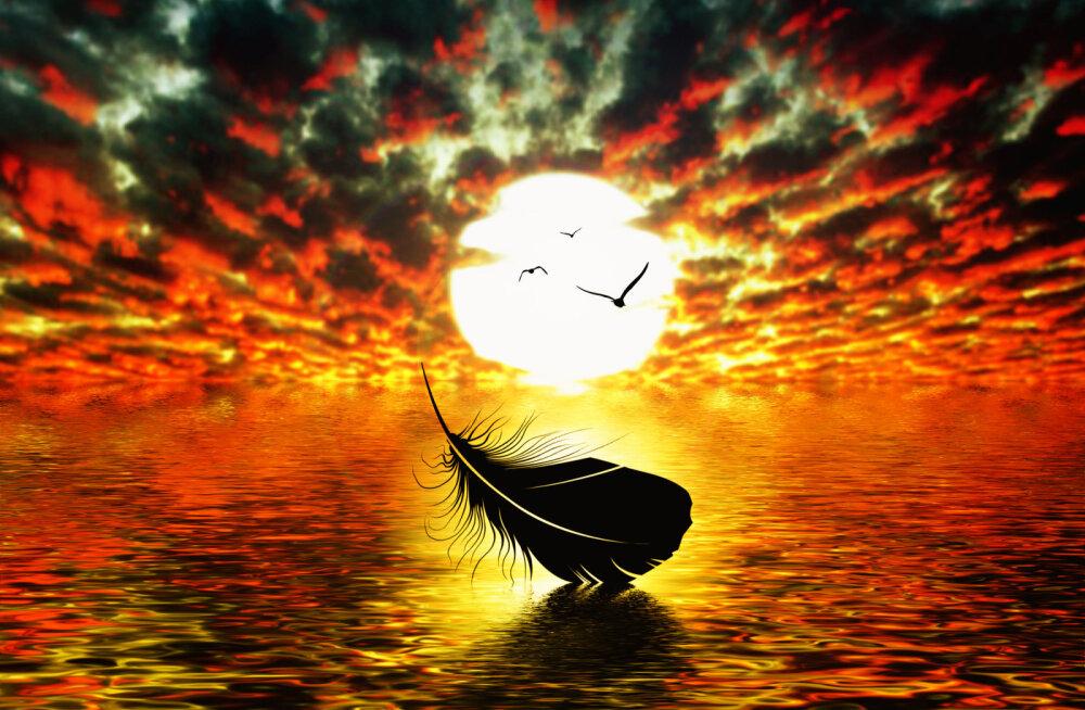 Šamaan Anu Pahka 7 lihtsat soovitust õnnelikuks eluks