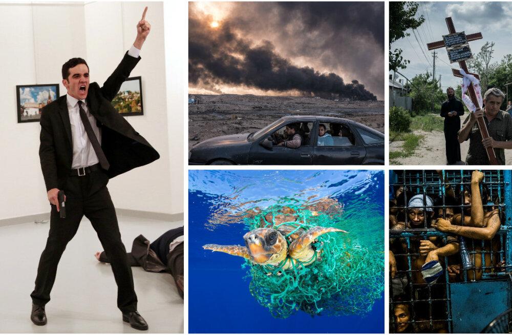 Pingeline 2016 läbi maailma mõjusaimate piltide: vaata täna auhinnatud parimaid pressifotosid!