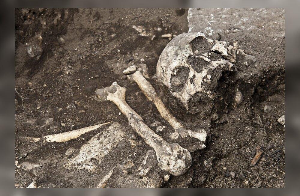 Ida-Virumaal leiti arvatav Rooma-aegne suur ohverdamispaik