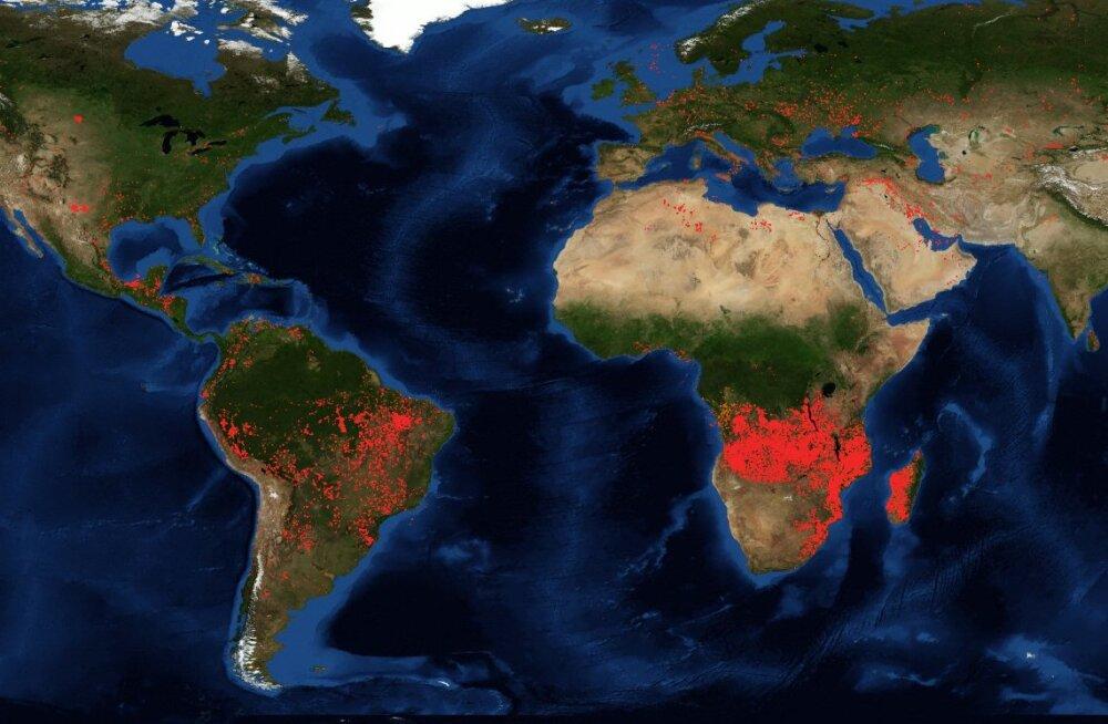 NASA satelliidikaart näitab, et Aafrikas lõõmab kordi enam tulekahjusid kui Brasiilias