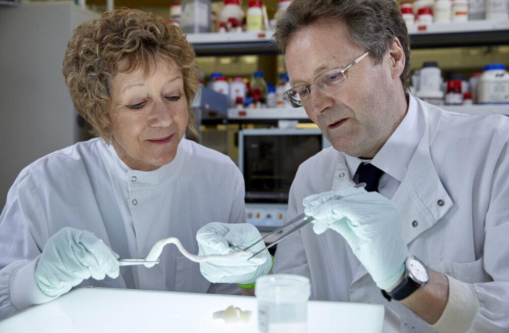FORTE INTERVJUU | Eileen Ingham ja John Fisher: teadlastest abielupaar, kelle leiutis vähendab vajadust organidoonorite järele