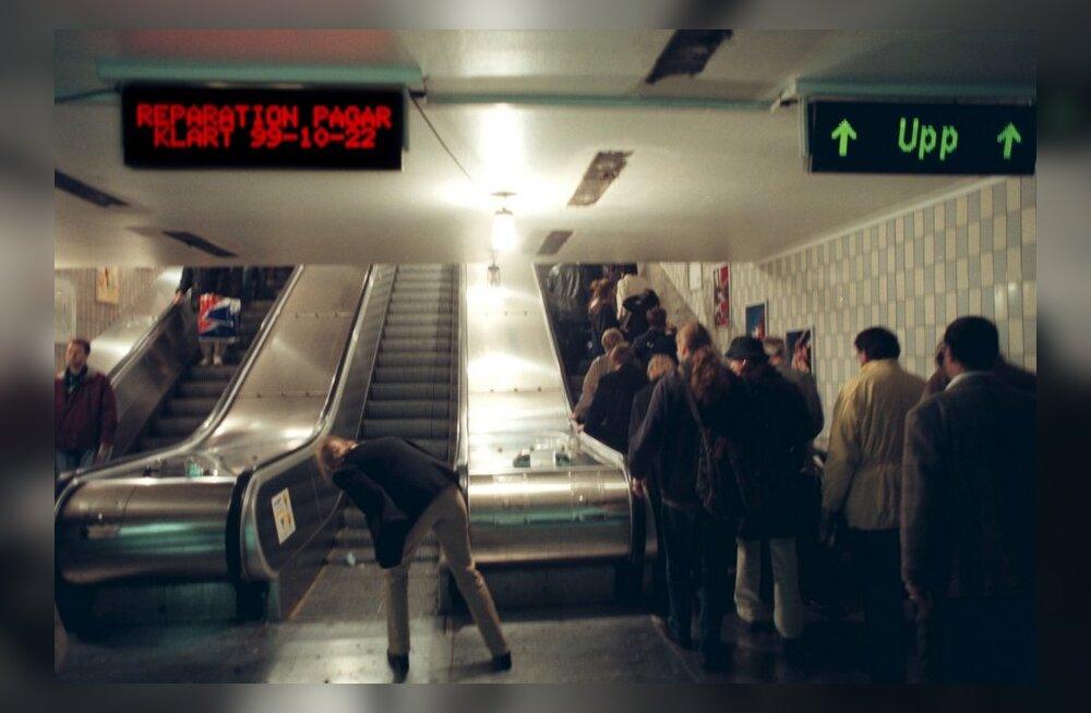 Stockholmi metroost leiti haruldasi eluvorme