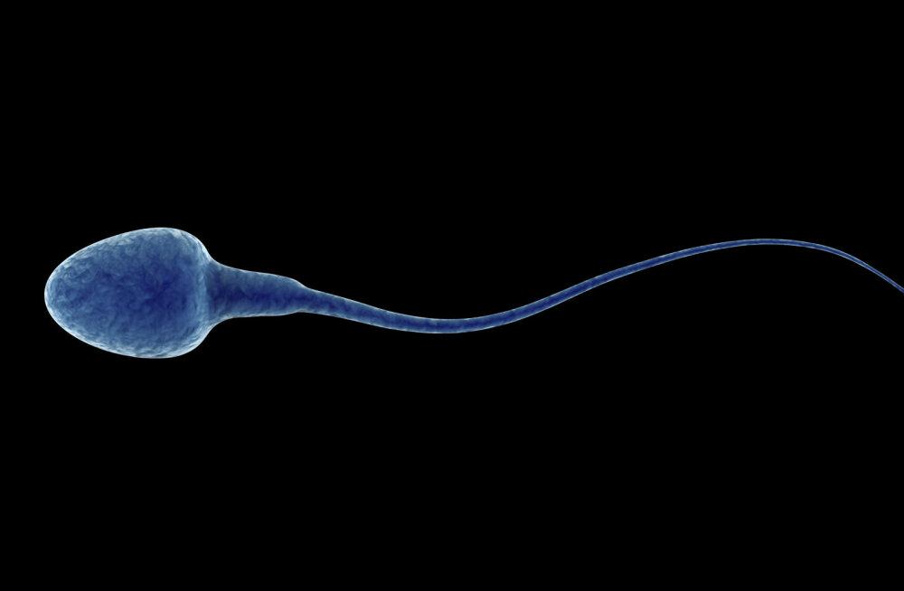 Куда исчез сперматозоид? Эксперты по фертильности дают 5 советов мужчинам
