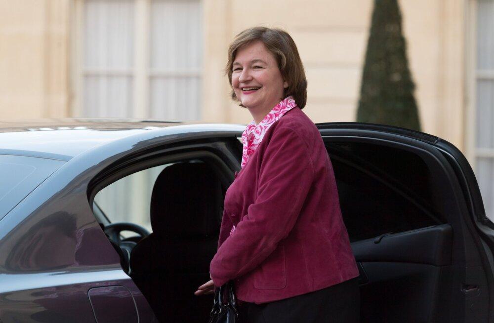 Prantsusmaa minister mõnitab enda kassiga eriti osavalt Brexitit