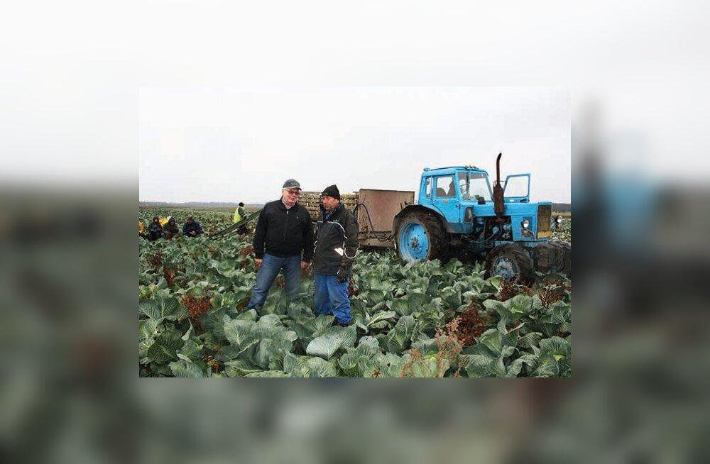 Venemaa sanktsioonid Saue valla tootjaid oluliselt räsinud ei ole