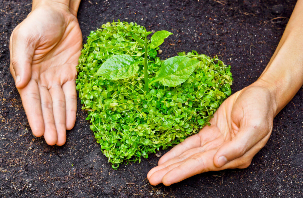 10 loodussõbralikku uusaastalubadust