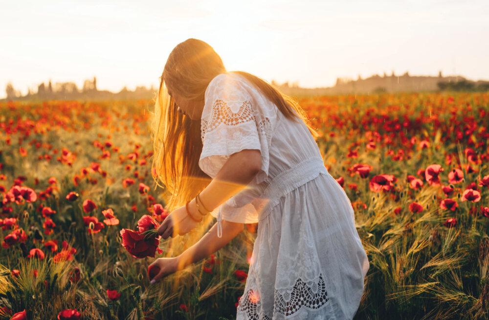 PÖÖRIPÄEVA HOROSKOOP | Need on neli sodiaagimärki, keda mõjutab eriti jõuliselt homne suvine pööripäev