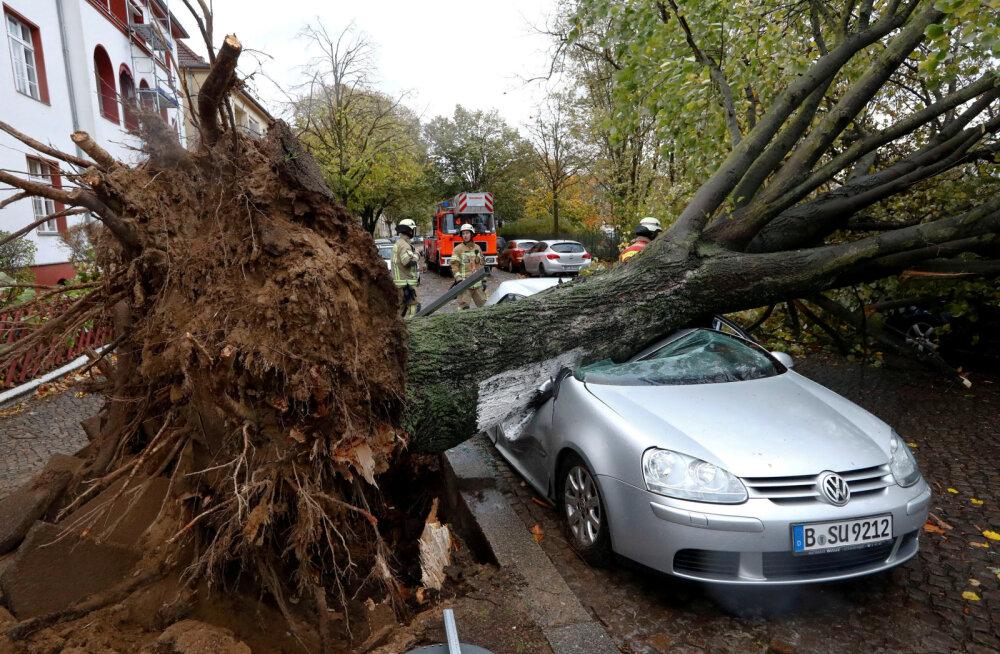 """ФОТО: Ураган """"Герварт"""" привел к жертвам и разрушениям в Европе"""