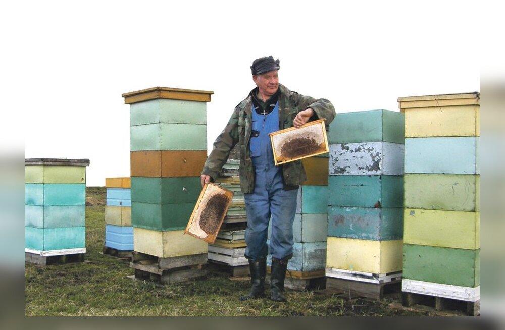 Mesilased kaovad tarudest jälgi jätmata