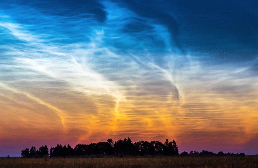 """Eelmise aasta juulis Simunas pildistatud """"Helkivad ööpilved"""" (""""Shining Clouds"""") ehk polaarmesosfäärpilved olid hooaja uhkeim vaatemäng, millest kirjutasid hiljem mitmed uudisteportaalidki üle ilma. Autori sõnul oli väga põnev jälgida nende pilvede dünaamikat. Ta ei lasknud end unest häirida ja pildistas põllumaal neid mitu tundi."""