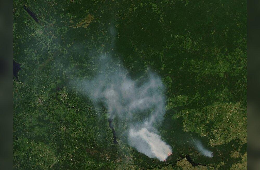 Metsapõleng Venemaa lääneosas, allikas:NASA