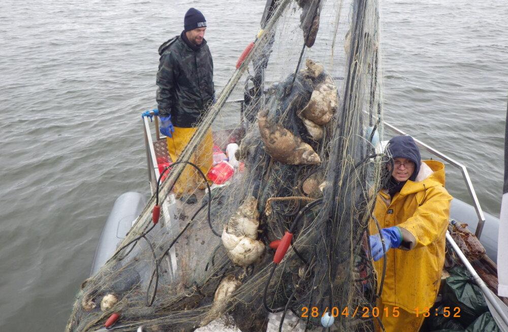 Peipsi puhastamise käigus eemaldati järvest ligi 500 nakkevõrku