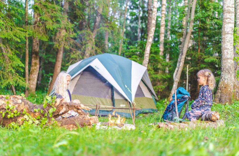 GALERII JA RETSEPTID — kuidas üks pere metsas söömas käis ja mis sellest kõik välja tuli