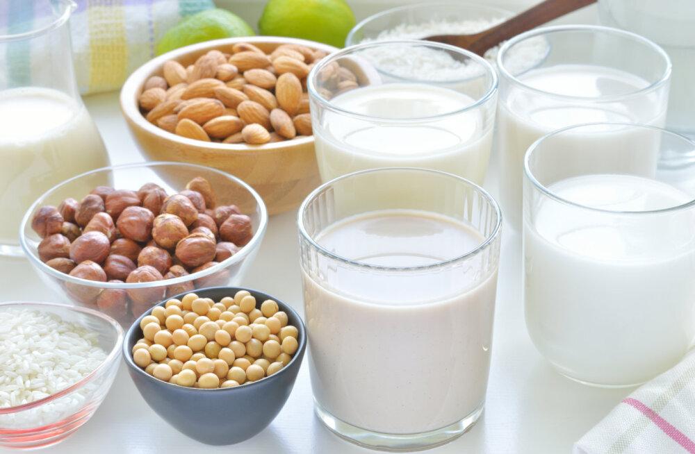 Miks tasub eelistada taimseid piimasid?
