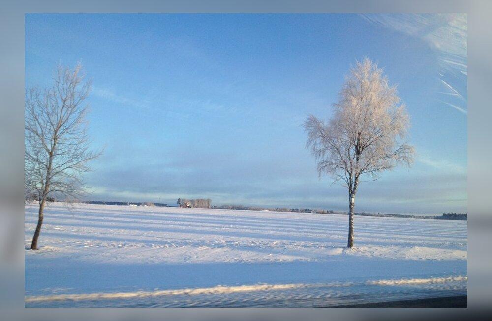 ВИДЕО: В Северной Эстонии в небе был замечен НЛО