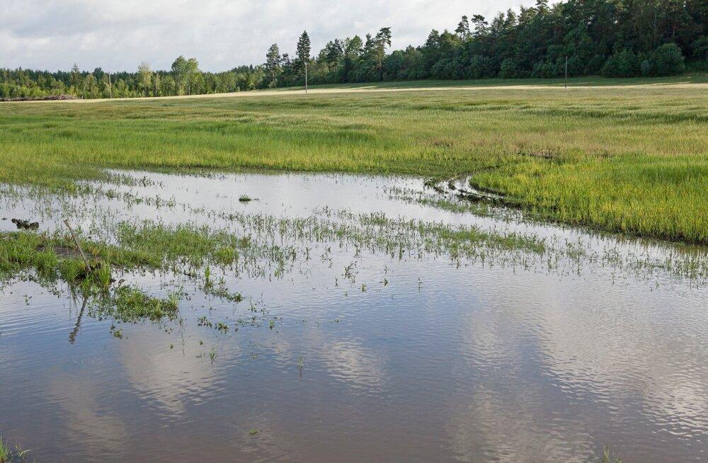 Государство поддержит модернизацию инфраструктуры водного хозяйства Маарду суммой в 3,6 млн евро